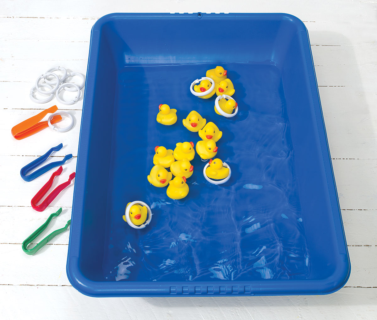 Counting Ducks STEM Activity